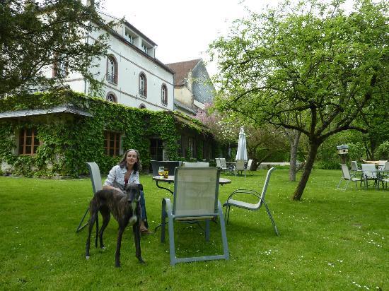 Auberge des Vieux Moulins Banaux: verger