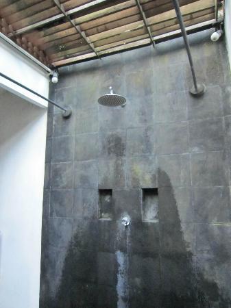 De Ubud Villas & Spa: Outdoor shower