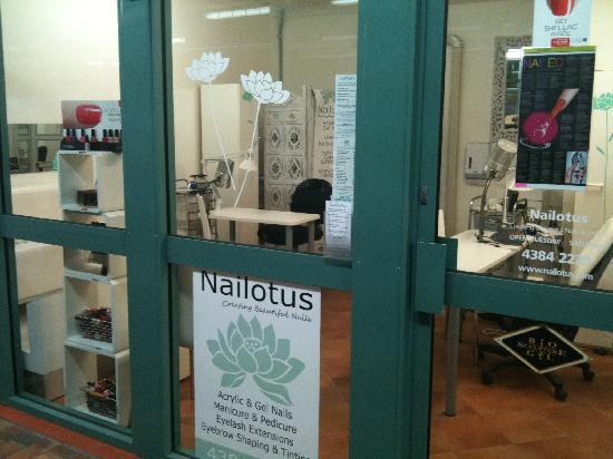 Nailotus- A Nail & Lash Salon