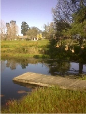 Tantivvey Country Guest House : getlstd_property_photo