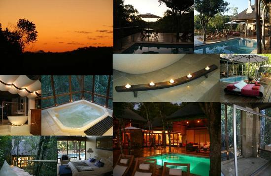 Trogon House and Forest Spa: Relaxing Trogon house