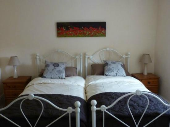Scoveston Grove B&B : Skomer