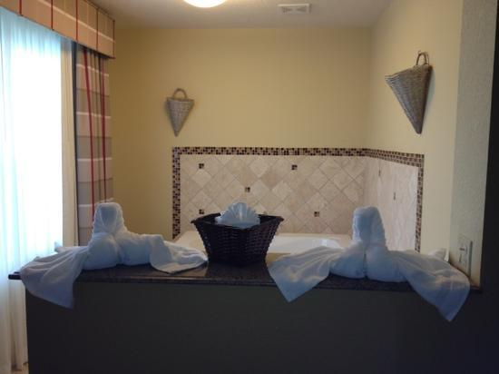 Country Inn & Suites By Carlson, Tampa Airport North: very cute