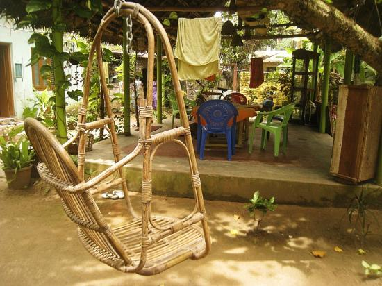 Shiva Garden: The backyard