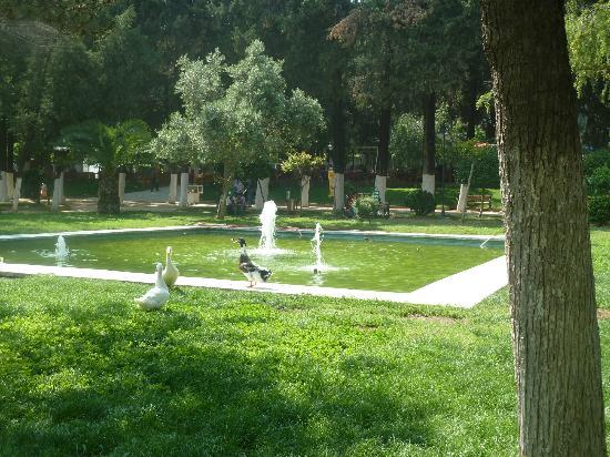 Great Antakya Park