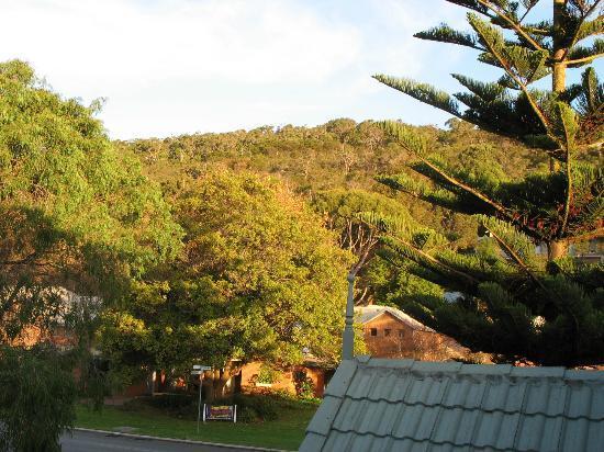 ดอลฟินลอดจ์: Mt Adelaide from the room balcony