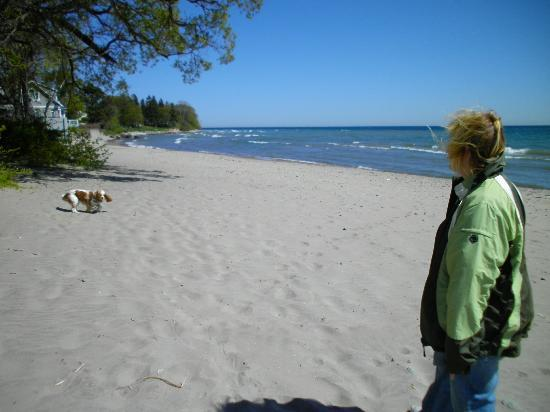 Breakers on the Lake: More Beach Fun (leash was photo shopped out)