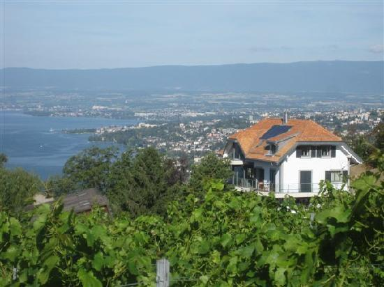 Grandvaux, Switzerland: Hospitality with a view