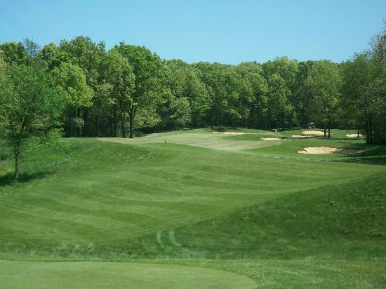 Shepherd's Hollow Golf Club: 3rd hole