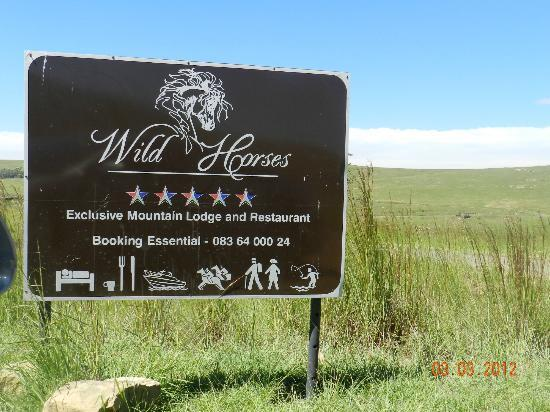 Wild Horses Lodge: Driving there - make sure you drive during the day and not at night.
