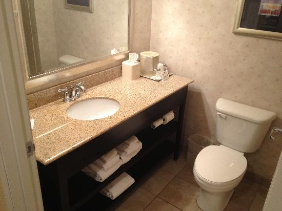 Wingate by Wyndham Erie: bathroom