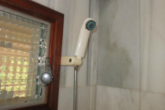 El Encinar Valldemossa Hotel: Duschkopf, nicht feststellbar