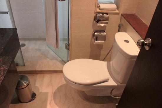 Madhuban Hotel : Toilet