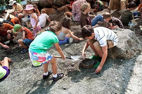 Museum of Life + Science: Sift through fossil dirt that was once on the ocean floor to find and keep marine fossils that a