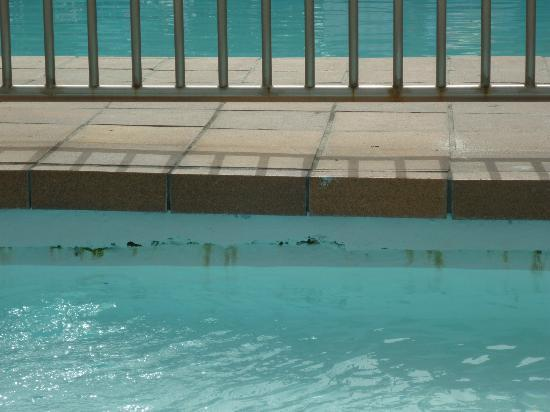Green Park Apartments: Around the edge of the children s pool.