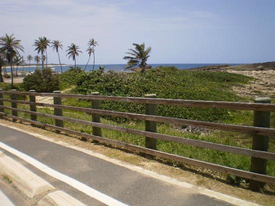 Paseo Lineal: Bike lane downhill...