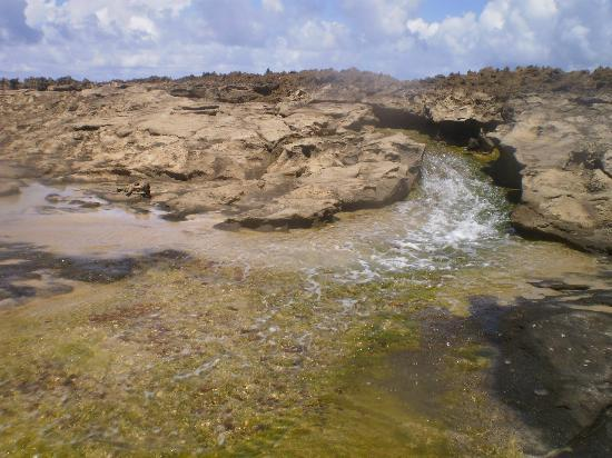 Paseo Lineal: Stream on rocky terrain...