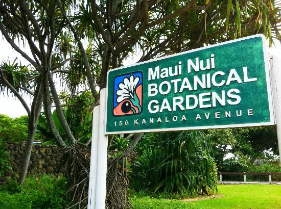 Maui Nui Botanical Gardens: Free parking curbside, or across the street.