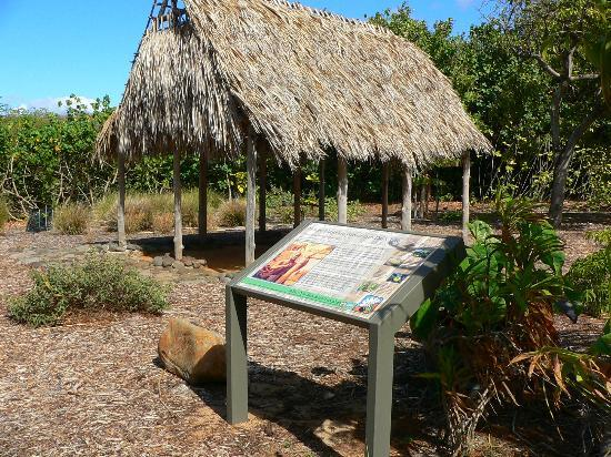 Maui Nui Botanical Gardens: Interpretive signage help to tell the story of the Gardens, but it is best views on a guided tou