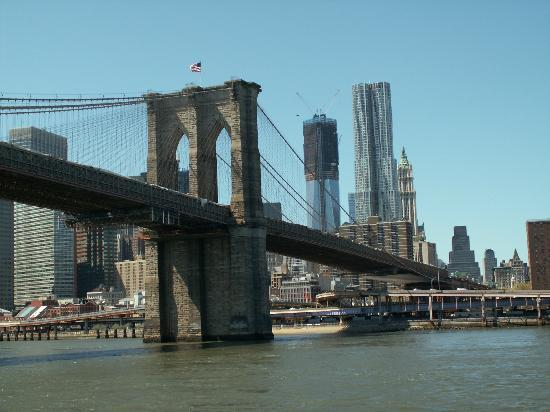 Tripadvisor New York City Shuttle Tours