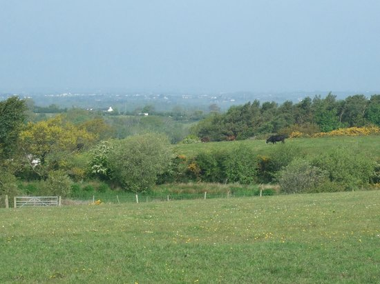 Tyn Rhos Country House: View towards Anglesey