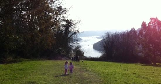 Lower Greenway Farm: View to Dartmouth from Greenway Hill