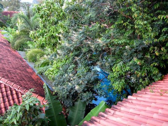 Ao Chalong Villa & Spa: Vue depuis la fenêtre de la chambre: vue plongeante vers la piscine