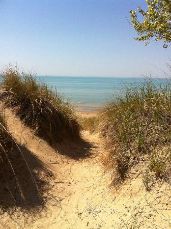 Camping London Ontario >> Sand dunes reaching the shores of Lake Huron - Picture of ...