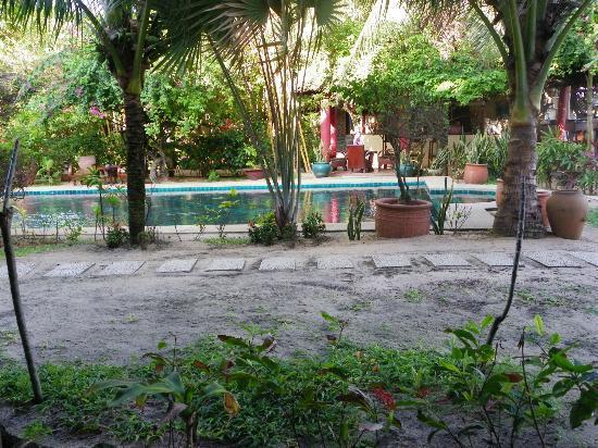 فول مون بيتش: Garden/Pool