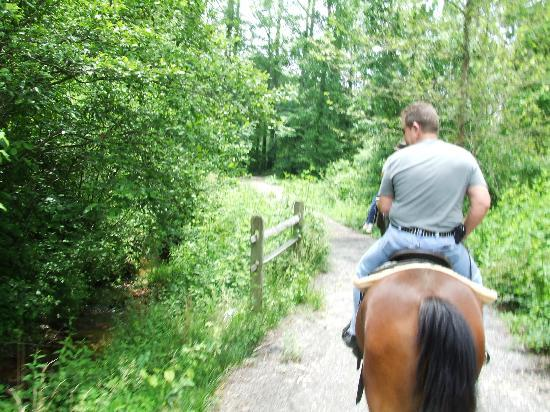 Forrest Hills Mountain Resort and Conference Center: Horseback trail ride..