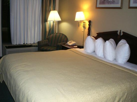 Quality Inn Lebanon: Comfy Bed