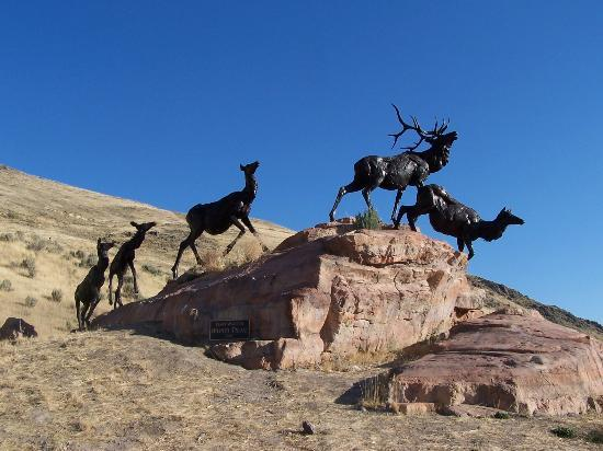 Jackson Hole Museum: Sculpture overlooking the Elk Preserve