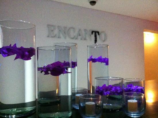 Hotel Encanto: Lobby