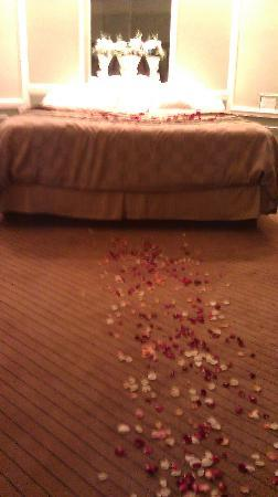 Inn of the Dove - Bensalem: rose petals from the door to the bed.