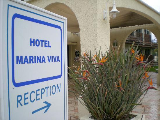 Hôtel Club Marina Viva : Oiseaux du paradis à l'entrée