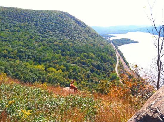 Hudson Highlands State Park: Peak