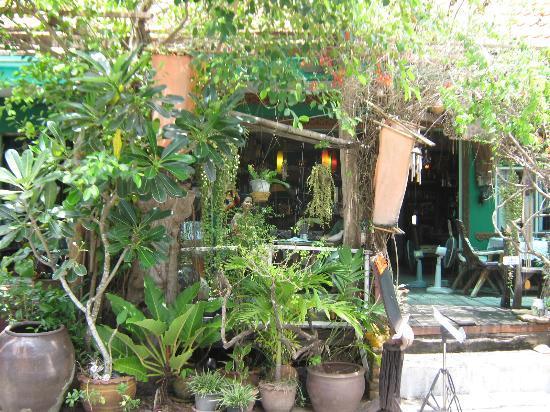 Gecko Cabane Restaurant: Exterior2