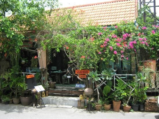 Gecko Cabane Restaurant: Exterior