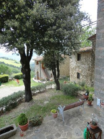 Poggio all'Olmo : Adorable old Tuscan Farmhouse!