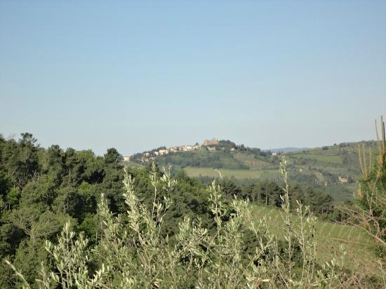 The hilltop town of Panzanno, visible from Poggio all'Olmo