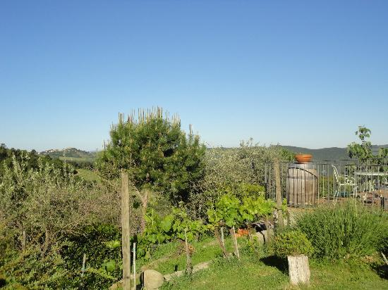 Poggio all'Olmo: Great views