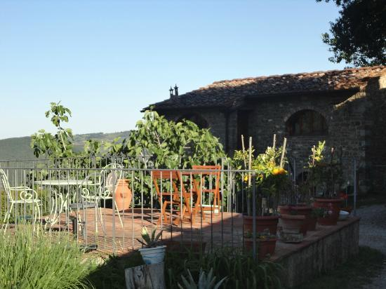 Poggio all'Olmo: Patio- PERFECT for an evening dinner, reading or glass of wine!