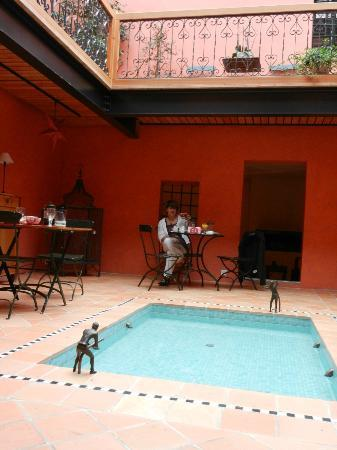 Jardin de Kabir : pose Kfé