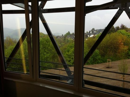 Oversum - Vital Resort Winterberg: Toller Blick - dreckige Fenster