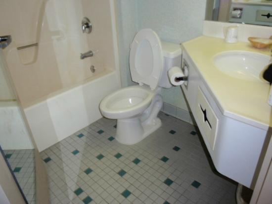 Days Inn & Suites Albany: Bathroom was dirty