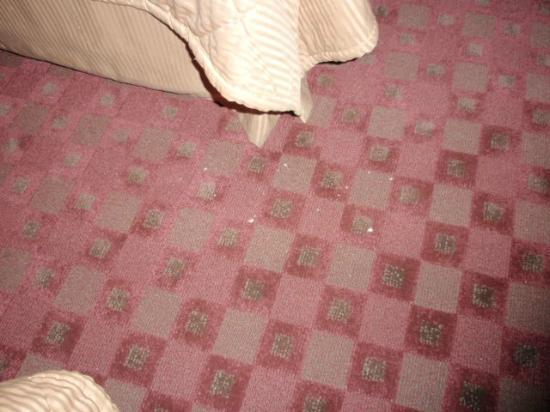 Days Inn & Suites Albany: Floor not vacuumed