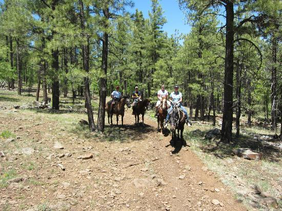 High Mountain Trail Rides: picture JB took of family