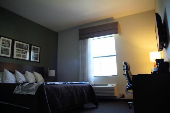 Sleep Inn & Suites Downtown Inner Harbor : The Room