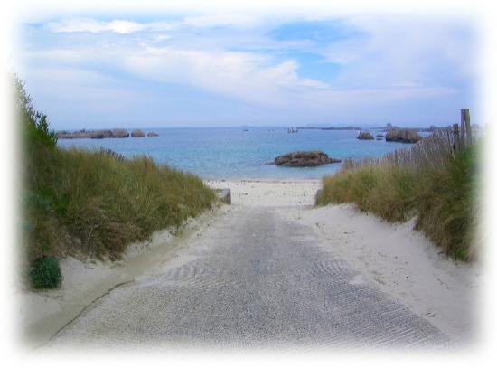 Belambra Clubs - Le Castel Sainte Anne : Plage de sable proche du Castel,  pas besoin de prendre la voiture