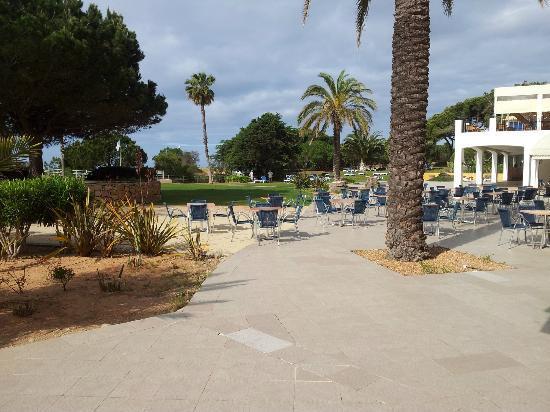 Alfamar Hotel: Pool area
